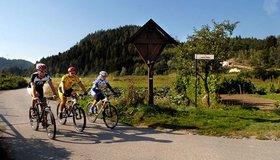 Leichte Biketouren in der Region