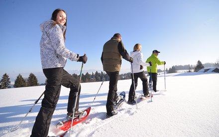 Snowshoeing in Scheidegg
