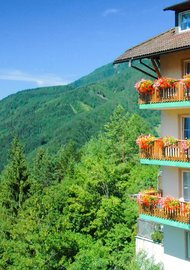 Natur Romantik Resort Berghof Brunner