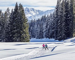 The Chiemgau district – a true insider tip for cross-country skiers