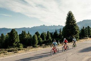 © Roadbike Holidays