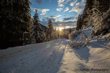 Ski touring holidays in Italy