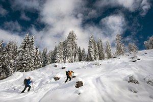 Skitour auf den Lackenkogel - Salzburger Sportwelt