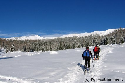 Ski touring in perfect conditions