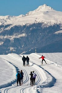 Regitnigs cross-country ski packages with course of lessons
