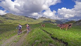 Easy bike tours Zillertal Arena