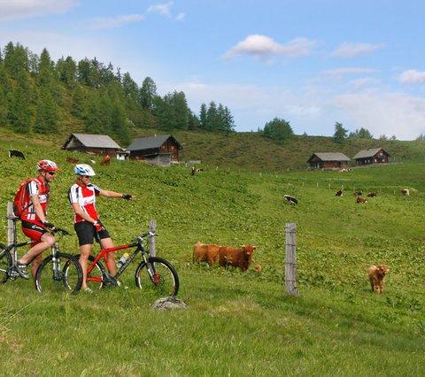 Bikeregio Flachau Alpines Gourmet Hotel Montanara