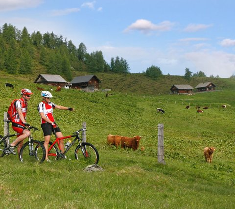 Bike region Flachau Alpines Gourmet Hotel Montanara