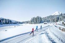 Increase at Cross Country Ski Holidays