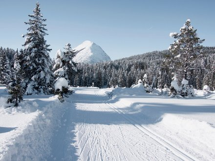 Langlaufloipe Tirol