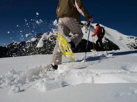 Schneeshuhwandern in Val di Fiemme