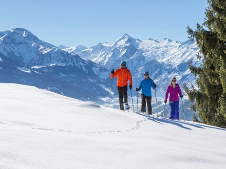 Snowshoe hiking in Zell am See - Kaprun