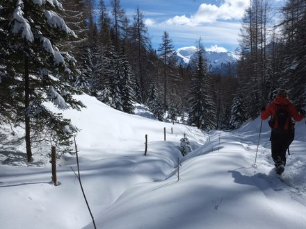 Winter hiking in Val di Fiemme