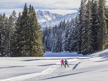 XC ski trails Chiemgau ©Chiemgau Tourismus