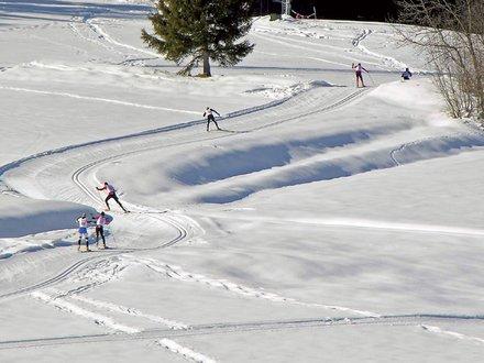 XC skiing in Carinthia